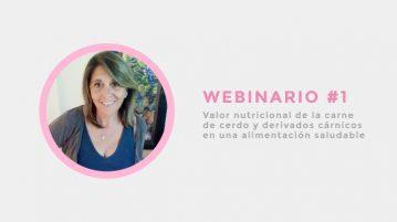 webinar 1 recomendaciones