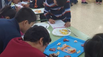 Talleres Escolares 2 Interporc