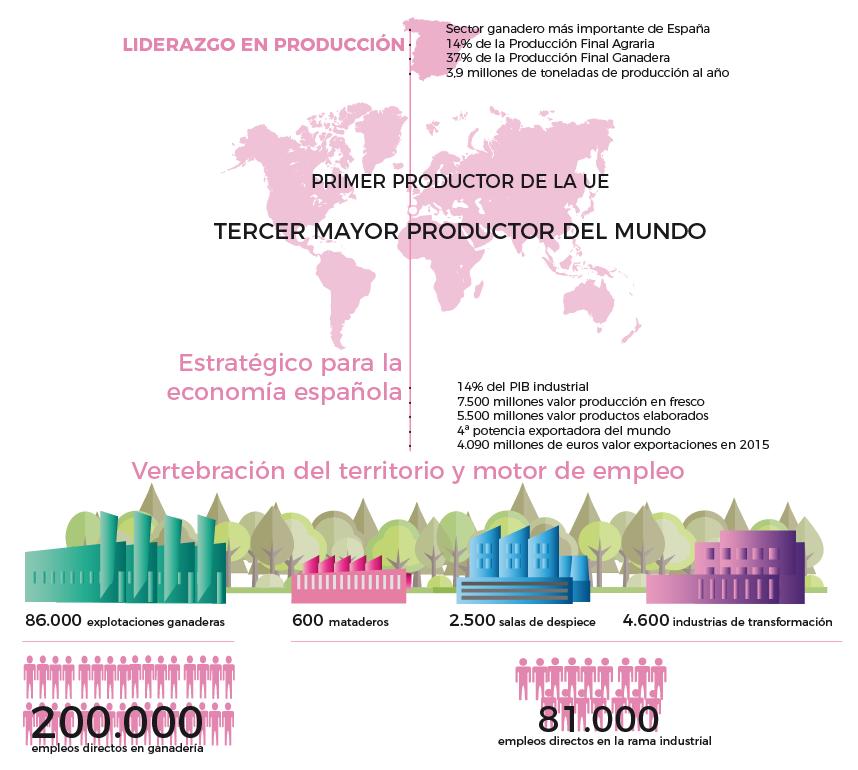 el sector porcino en datos