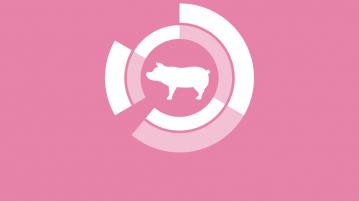 los datos del sector porcino de capa blanca