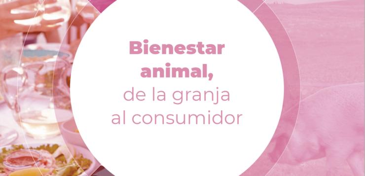 """""""La experiencia del sector porcino en bienestar animal le ha permitido anticiparse a las exigencias de administraciones y consumidores"""""""