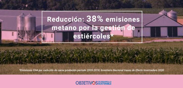 El sector porcino reduce en un 38% sus emisiones de metano por gestión de estiércoles en los últimos 15 años