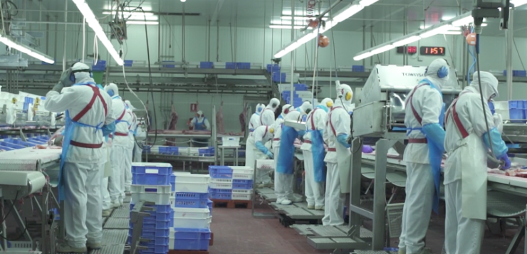 """INTERPORC: """"El sector porcino tendrá un papel clave en la recuperación y transformación de la economía de España"""""""