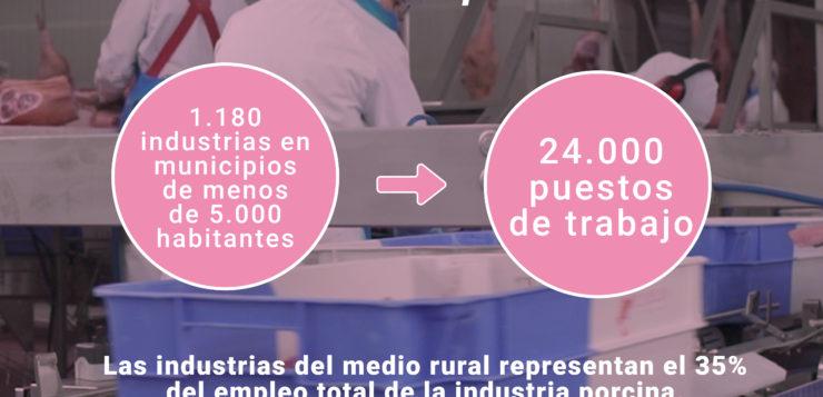 Las industrias de porcino generan 24.000 puestos de trabajo en la 'España rural'